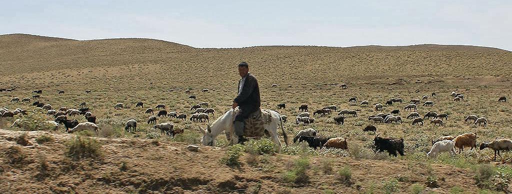 Village ouzbèk : vivre à la campagne en Ouzbékistan