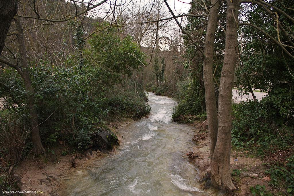 La rivière est vive en cette période de l'année, zigzaguant entres les arbres vénérables