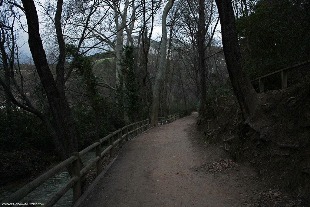 La promenade au parc protège les arbres des marcheurs, avec ses barrières en bois.
