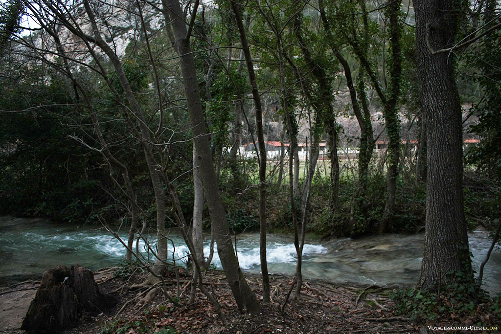 De l'autre coté, une grande propriété, cachée par la barrière d'arbres du parc.