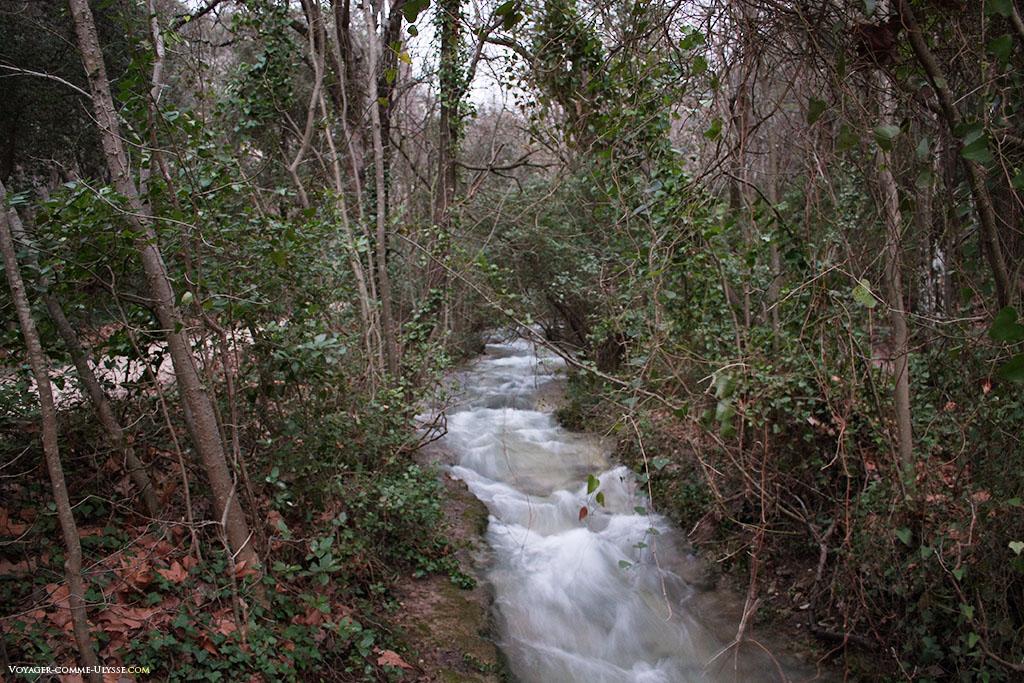 On ne se lasse pas de regarder toute cette eau couler au milieu du bois