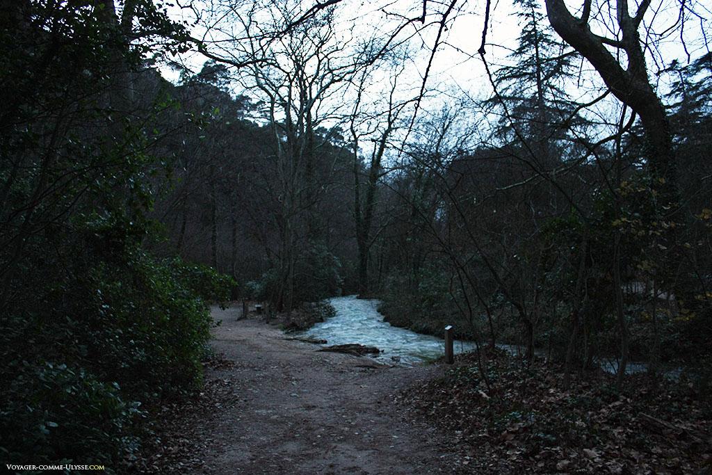 Le parcours de randonnée à gauche, la rivière à droite, tel des jumeaux serpentant au milieu des arbres.