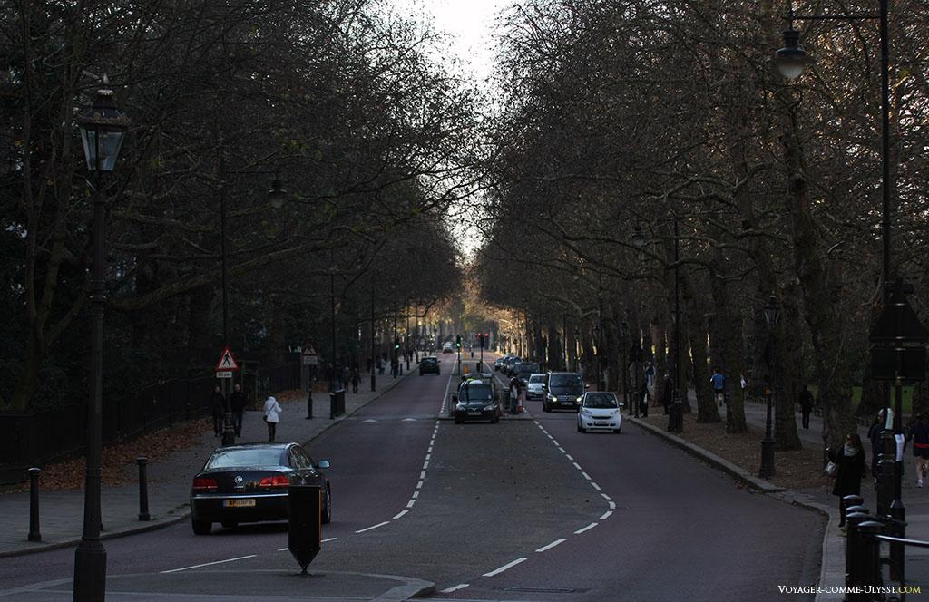 Une grande rue paisible et boisée, avec peu de circulation automobile. La ville de Londres a beaucoup travaillé ces dernières années pour restreindre au maximum la pollution provoquée par les voitures.