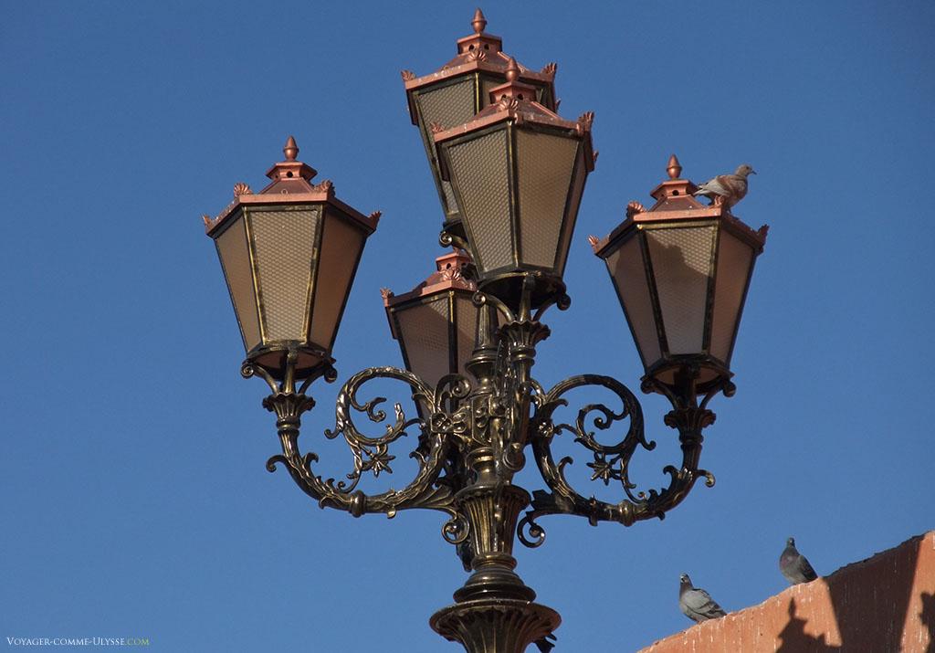 Les pigeons apprécient également ces belles pièces d'illumination publique, qui, en plus d'être utiles, décorent généreusement la ville rouge, Marrakech.