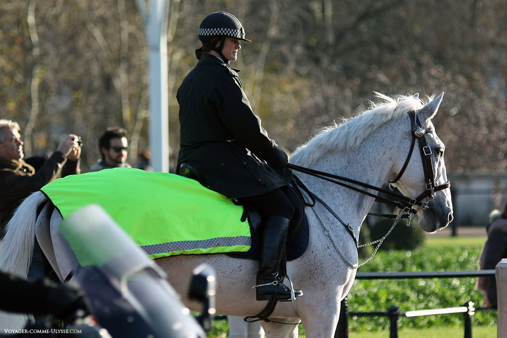 Police montée anglaise. C'est beau de voir passer sur un cheval quelqu'un qui est là pour la sécurité des londoniens!