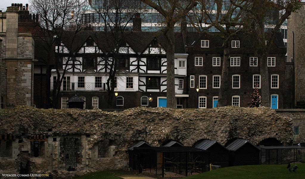 En bas, contre l'ancienne muraille, vous pouvez voir des maisonnettes en bois: ce sont les logements luxueux des corbeaux de la Tour de Londres.