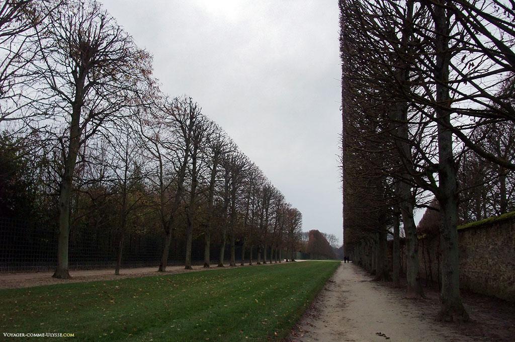 Les arbres sont taillés au millimètre. Tout est ordonné et géométrique.