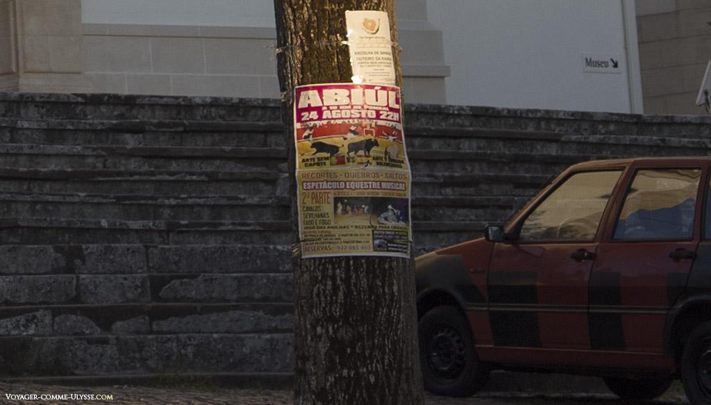 Affiche sur une arbre