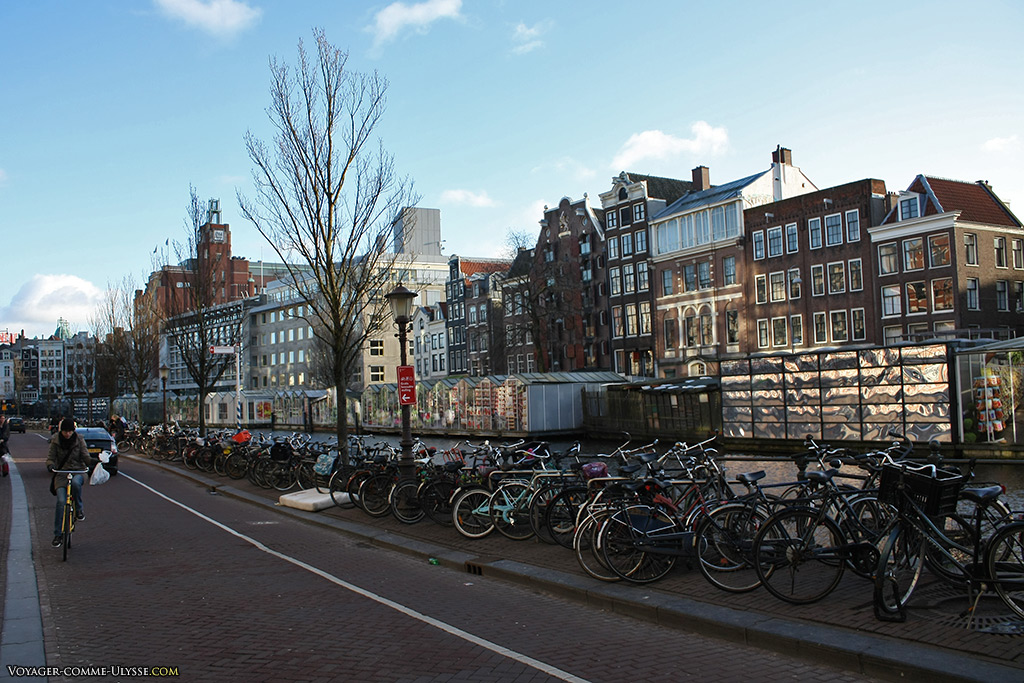 C'est pour ça que l'on vient au Bloemenmarkt : la promenade le long du canal Singel est une des plus agréables de la ville.