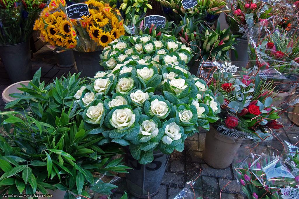 Des fleurs, beaucoup de fleurs.