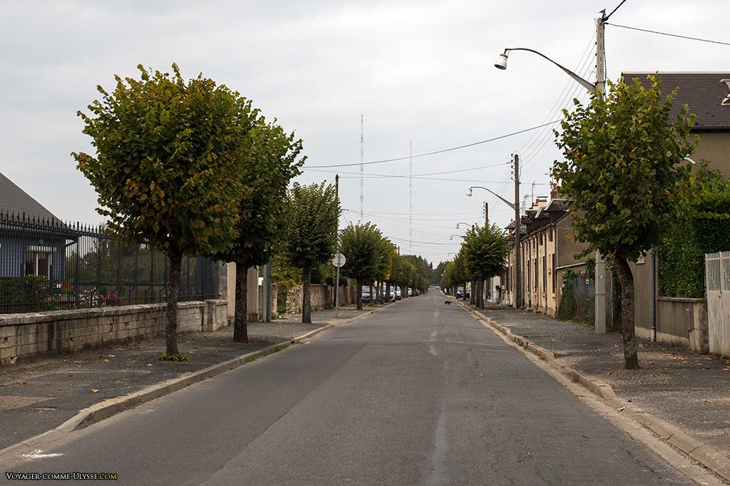 Sur l'horizon, les gigantesques antennes de l'émetteur d'Allouis, commune voisine de Mehun-sur-Yèvre.