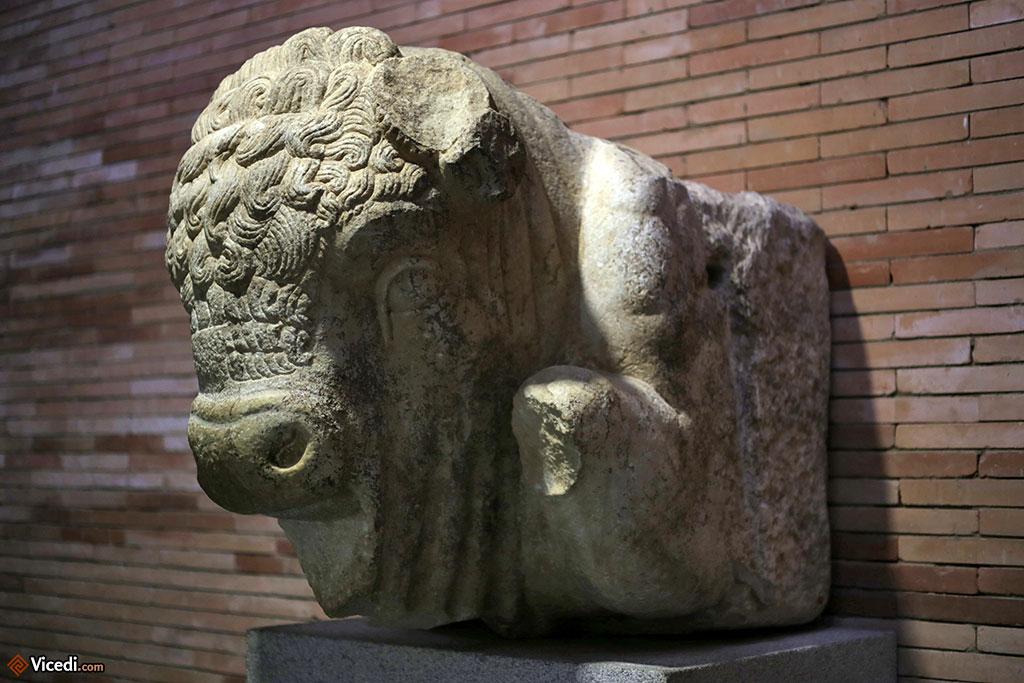 Protomé de taureau, élément décoratif d'un ancien bâtiment.