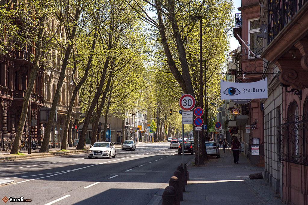 Une des plus belles rues de la ville selon moi, la Rheinstraße, avec ses arbres et ses beaux immeubles.